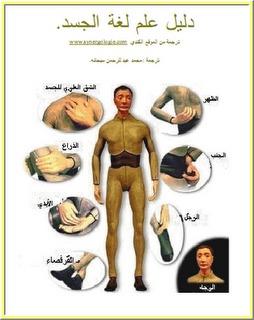 صورة كتاب دليل علم لغة الجسد – محمد شحاته