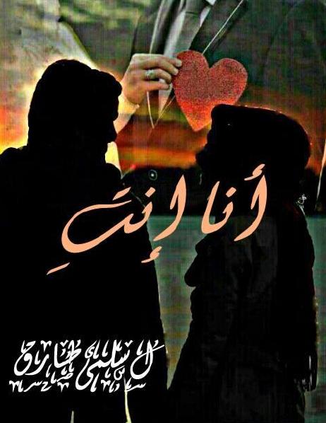 صورة رواية أنا أنت – سلمى طارق