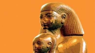 صورة كتاب هذه هي مصر – وسيم السيسي