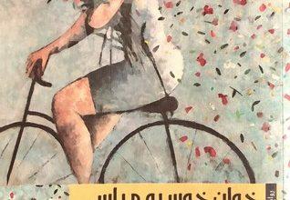 صورة رواية المرأة المهووسة – خوان خوسيه مياس