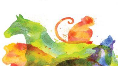 صورة كتاب سلوك الحيوان – أحمد حماد الحسيني