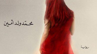 صورة رواية منينة بلانشيه – محمد ولد أمين