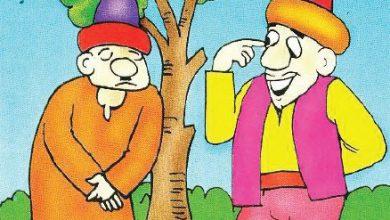 صورة قصة جحا والسارق الخفي (سلسلة نوادر جحا للأطفال 47)
