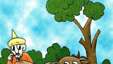 صورة قصة جحا والبقرة (سلسلة نوادر جحا للأطفال 94)
