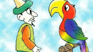 صورة قصة جحا والببغاء (سلسلة نوادر جحا للأطفال 95)